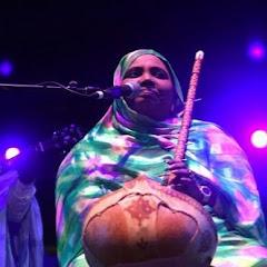Mohamed Ahmed Cheikh