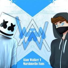 Alan Walker Y Marshmello Fans