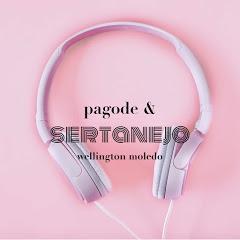 PAGODE & SERTANEJO
