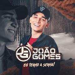 João Gomes - Topic