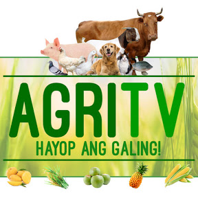 AGRITV HAYOP ANG GALING