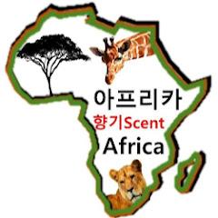 아프리카향기 AfricaScent