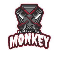Professional Monkey