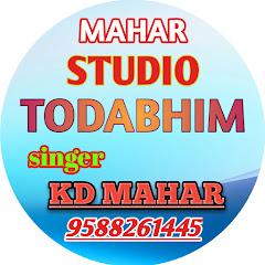 Mahar Studio Todabhim
