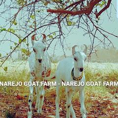 Narejo Goat Farm