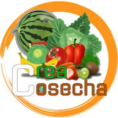 CreaCosecha, S.A.