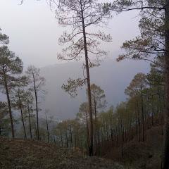 Properties in Himachal Pradesh