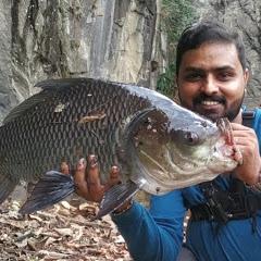 A4 Anglers