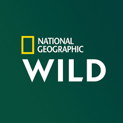 National Geographic Wild France