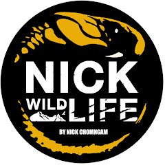Nick Wildlife