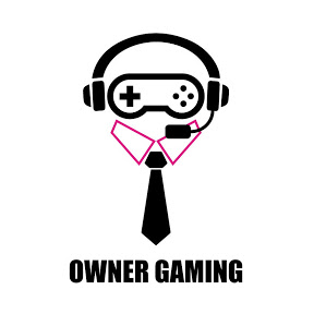 owner gaming