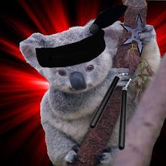Koalas with Nunchucks