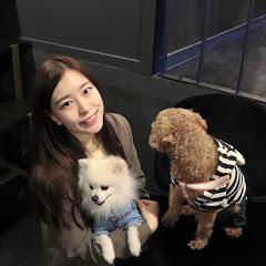 밍찌니 MingTV
