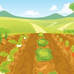 はじめしゃちょーの畑とフラベジ切り抜きch