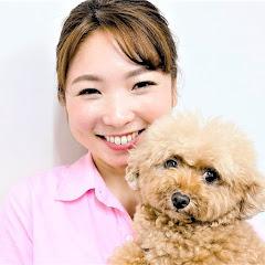 犬のしつけ 新!遠藤エマ チャンネル