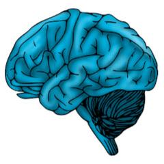 Brain Friz