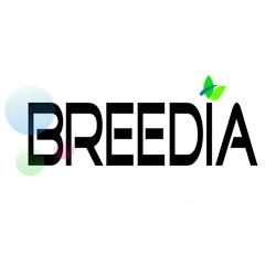 브리디아Breedia