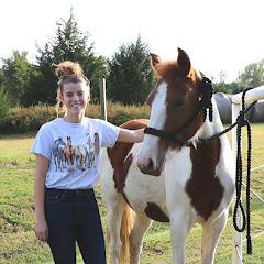 Equine Helper