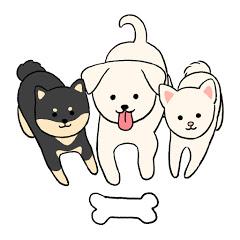 개씨나들[Dog sisters] - 애견펜션소개 & Vlog