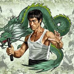 Dragon Fights
