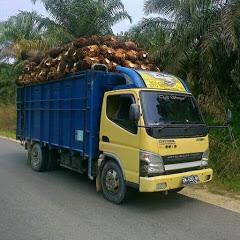 truk sawit