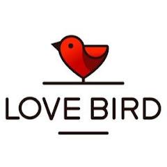 Love Birds Creation