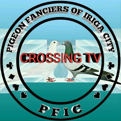 CROSSING TV