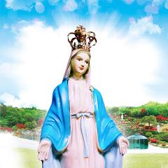 마리아의 구원방주