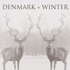 Denmark Winter