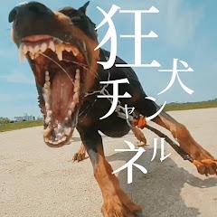 狂犬の正体