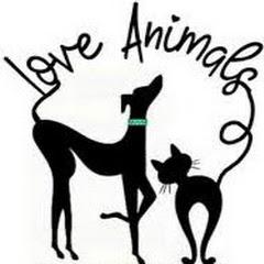 Love Animals US
