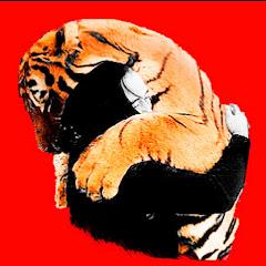 День Тигра - Tiger Den
