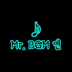 Mr. BGM 맨 🅥