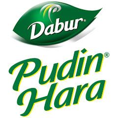 Pudin Hara