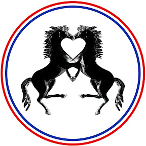 Top100 Stallions