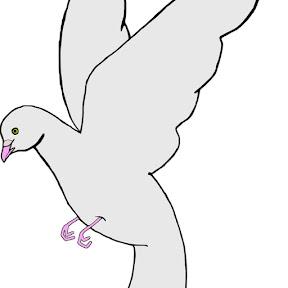 성북구비둘기