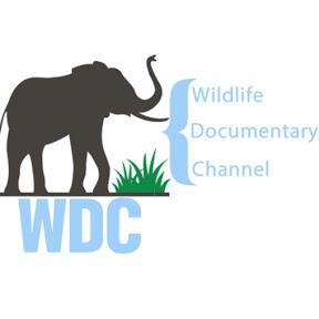 Wildlife Documentary Channel WDC