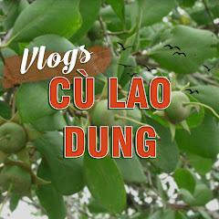 Cù Lao Dung Vlogs
