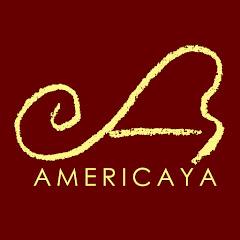 Americaya Music Shop【アメリカヤ楽器店】