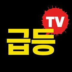 급등일보TV - 진짜 주식 고수들의 이야기