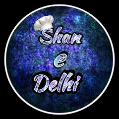 Shan e Delhi