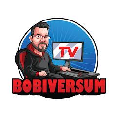 Bobfrieth Zockt / BobiversumTV