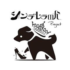 シンデレラの犬Project