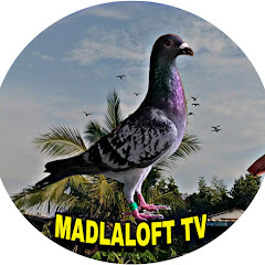 Madla Loft TV