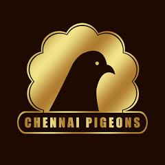 CHENNAI PIGEONS