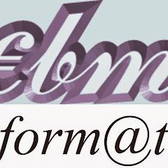 Ebm Informatica