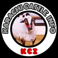 Karachi Cattle Info
