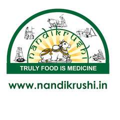 NandiKrushi