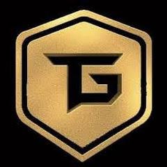 Techno Gamerz Live