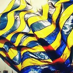 Fenerbahçeli